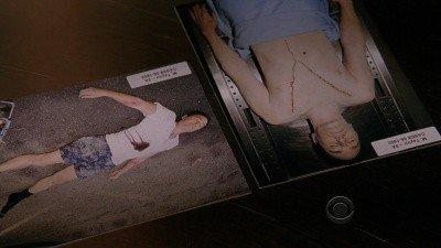 CSI: New York (S06E12): Criminal Justice Summary - Season 6 Episode